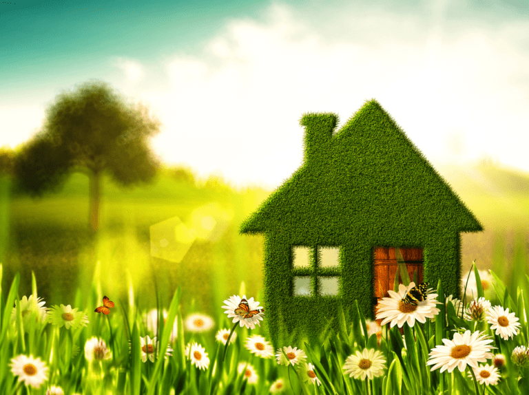 Top Green Cleaning Tips