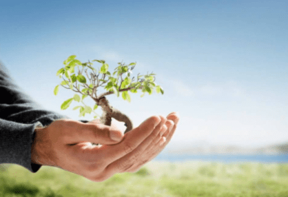 Benefits Of Cleaning Products That Are Environmentally Friendly
